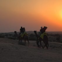 Jodhpur, Mandore and the Thar Desert