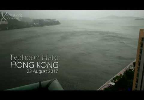 Hong Kong Typhoon 4k